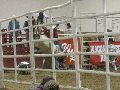 photo of bullriding at the rodeo