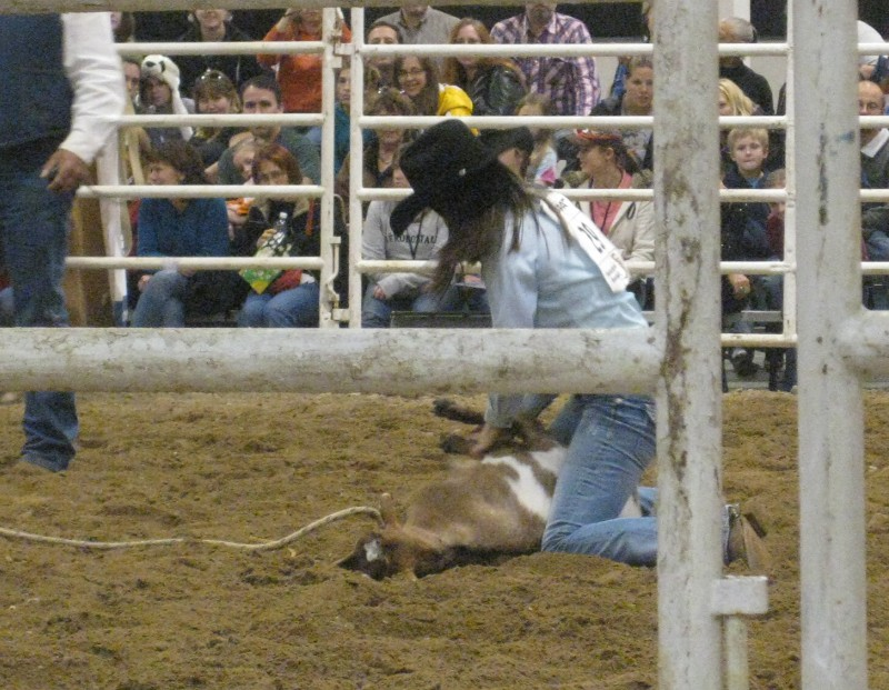 photo of rodeo cowgirl tying a goat