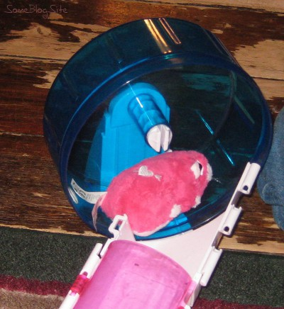 picture of a Zhu Zhu Pet hamster wheel