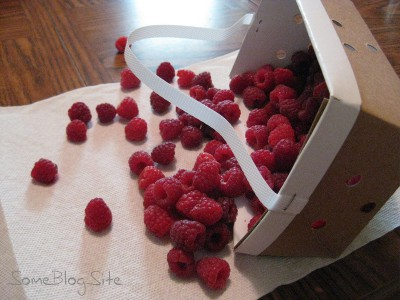 picture of fresh raspberries tumbling out of a box