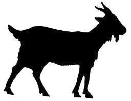 silhouette of a goat