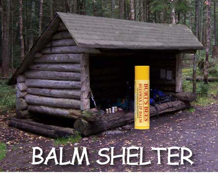 image of a chapstick under a lean-to to make a balm shelter