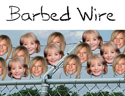 Barbra Streisand and Barbara Walter take the place of sharp barbs on strings of barbed wire