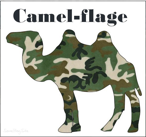 pun picture of camouflage camel to make something camel-flage