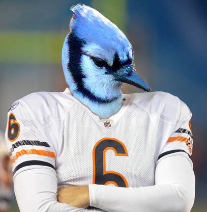 Jay Cutler combined with a blue jay to make a blue jay cutler