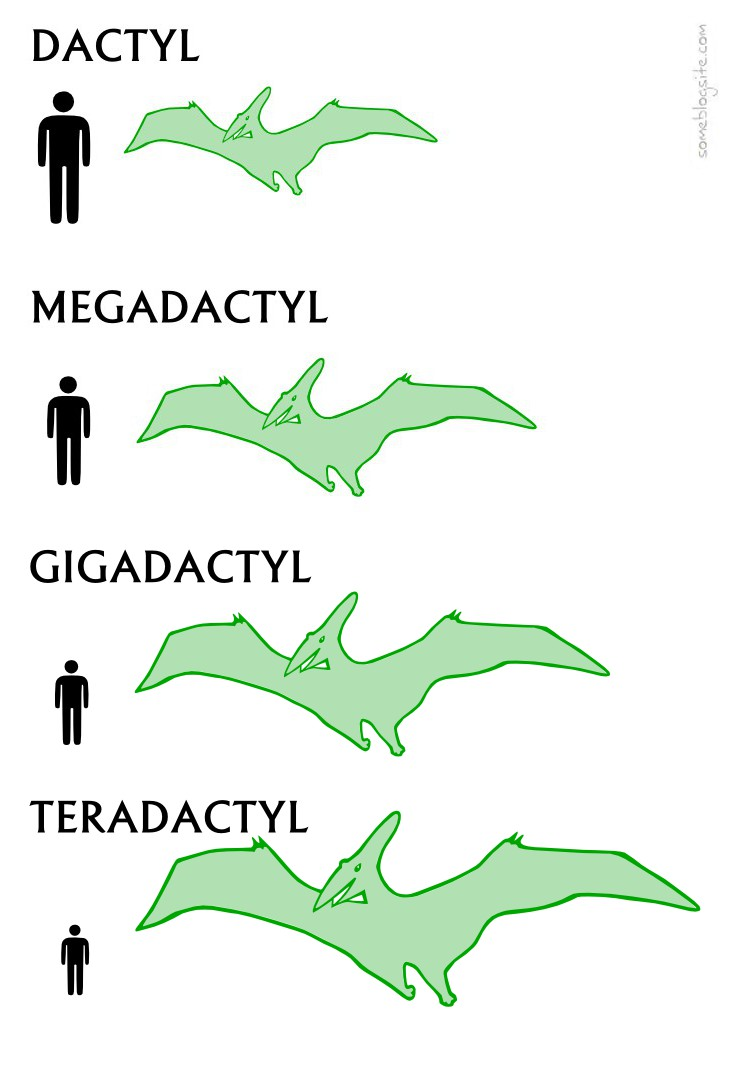drawing showing dactyl, megadactyl, gigadactyl, and teradactyl instead of pterodactyl