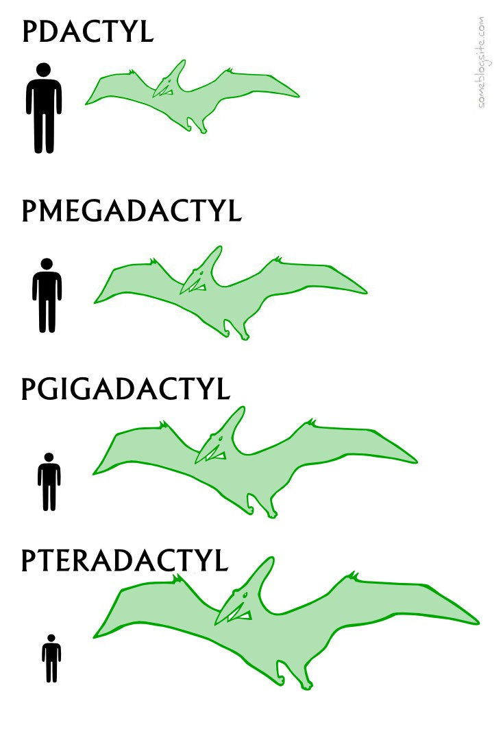 drawing showing pdactyl, pmegadactyl, pgigadactyl, and pteradactyl instead of pterodactyl