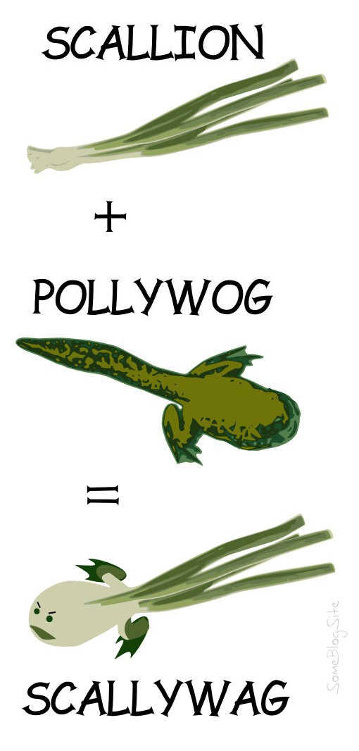 image of scallions plus a pollywog makes a scallywag