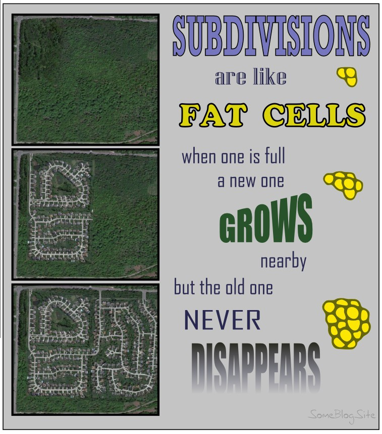 inspirational poster about how subdivisions are like fat cells