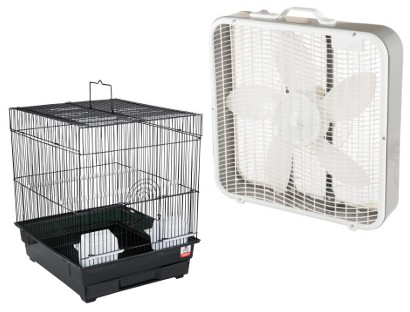 bird cage plus box fan for a flying treadmill