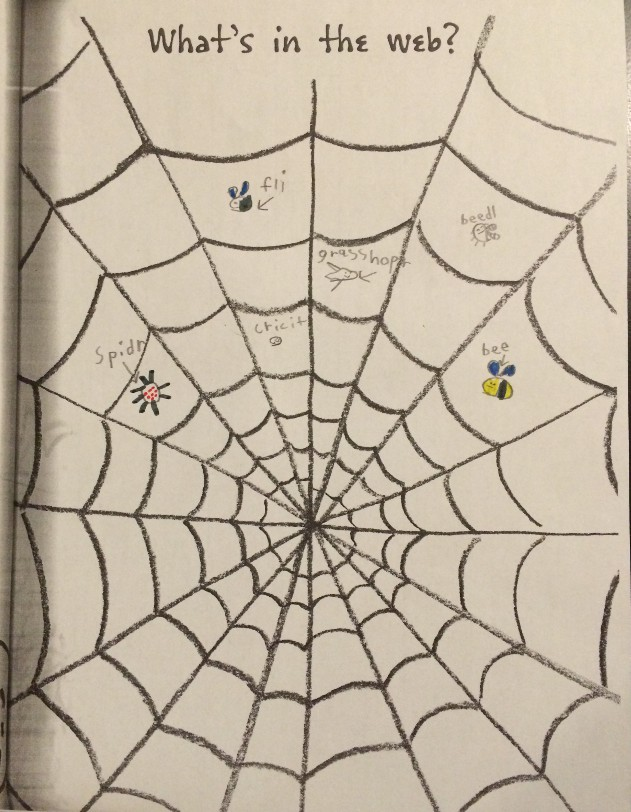 image of a first-grade crayon drawing showing bugs stuck in a web