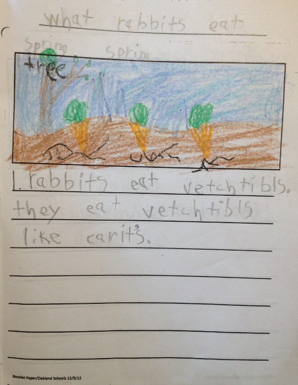image of a kindergartener's story about rabbits, how they bounce