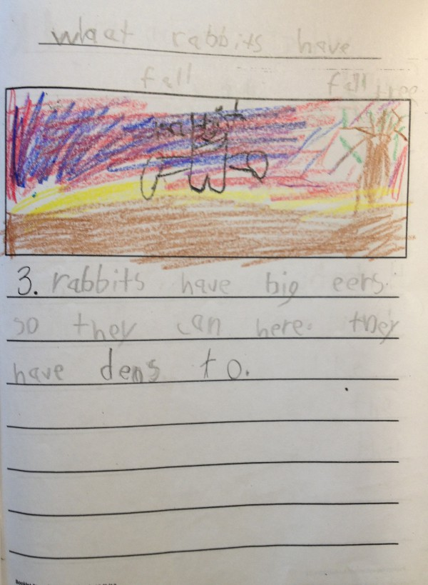 image of a kindergartener's story about rabbits, table of contents