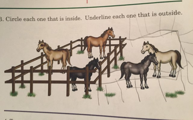 image of an horses inside and outside a corral