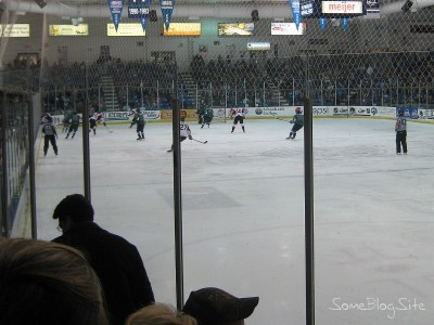 picture of a minor-league hockey game