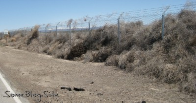 photo of tumbleweeds piled against a chain-link fence