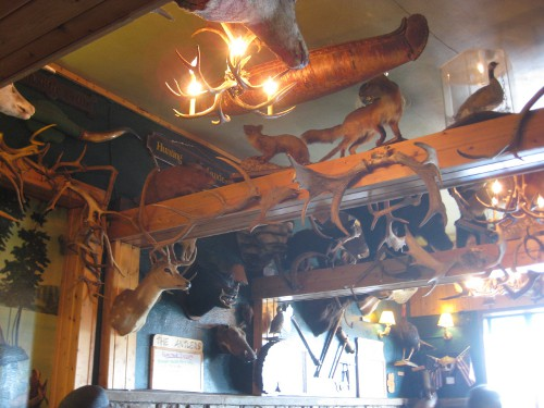 the decor of the Antler's restaurant - lots of taxidermy and skulls mounted on the walls and ceiling