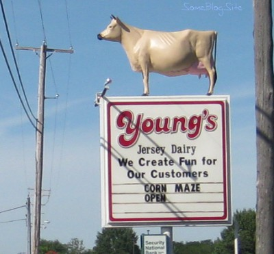cow sign at Young's Jersey Dairy in Yellow Springs, Ohio