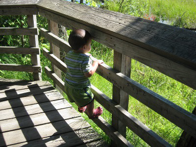 picture of a boy climbing a fence railing